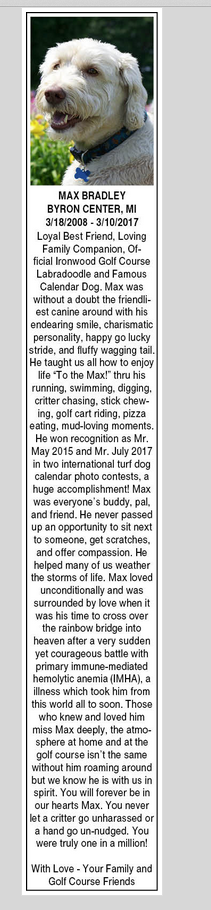 Max's Obituary copy